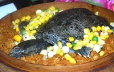 糯米扣甲鱼图片