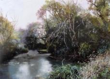 池塘小景图片