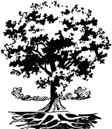插画树图片