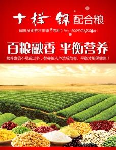 糧食宣傳 海報圖片