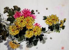 菊香蜂舞图片