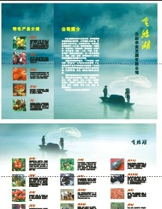金鹅湖宣传单图片