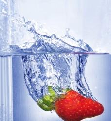 動感水中草莓
