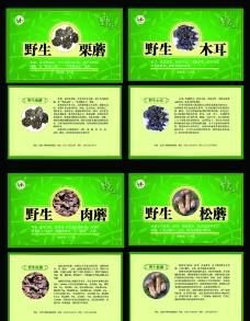 野生菌包装盒图片