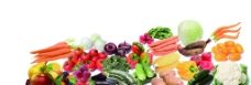 蔬菜水果大全图片
