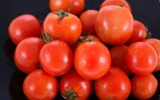 蕃茄 西红柿