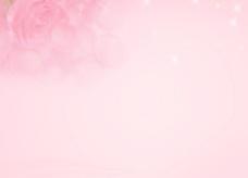 粉红色玫瑰背景图片