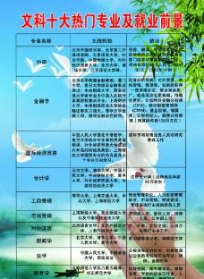 十大热门专业就业海报图片