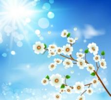 阳光灿烂梦幻花纹花朵图片