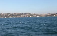 远山大海海鸥图片
