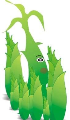 竹子 竹笋图片
