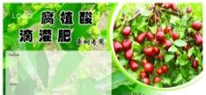 红枣肥料图片