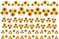 太陽花水紙排版图片