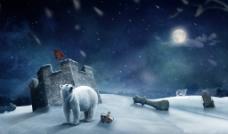北极熊 北极夜景图片