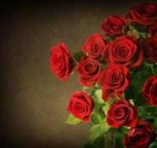 怀旧古典花纹红玫瑰图片